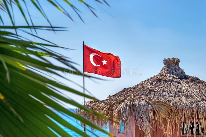 Bandiera della Turchia sui precedenti del mare e sulla palma un giorno soleggiato fotografie stock