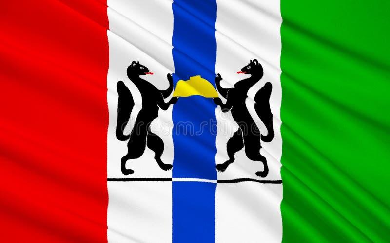 Bandiera di Novosibirsk Oblast, Federazione Russa fotografie stock libere da diritti