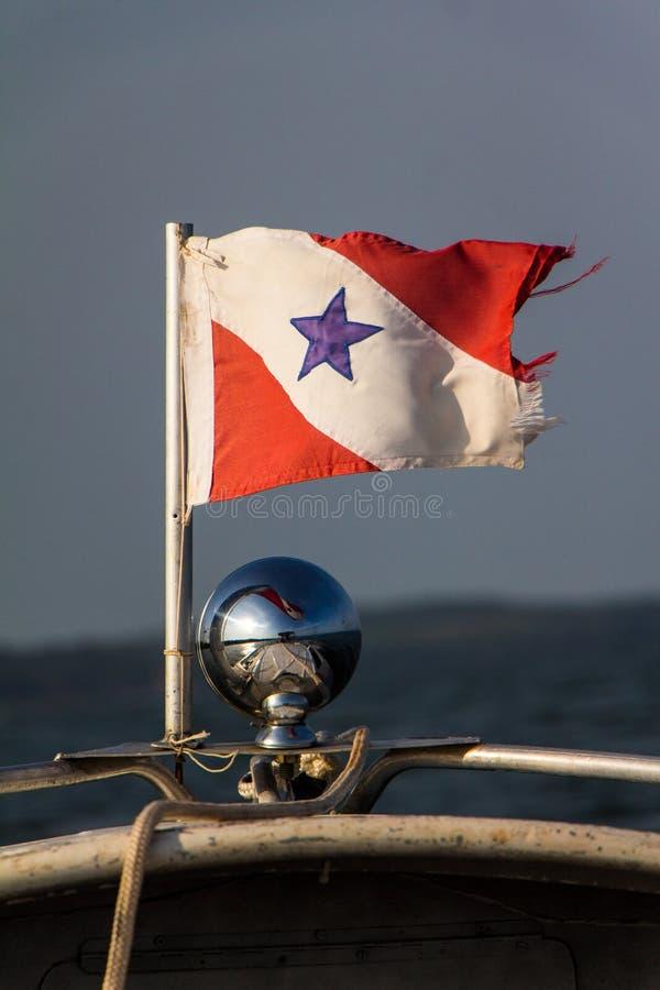 Bandiera di Para immagini stock libere da diritti
