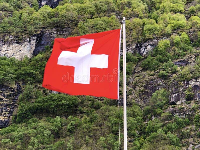 Bandiera nazionale della bandiera di Confederazione Svizzera della Svizzera - bandiera nazionale della Svizzera fotografia stock