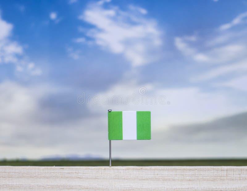 Bandiera nigeriana con il vasto prato e cielo blu dietro  immagine stock libera da diritti
