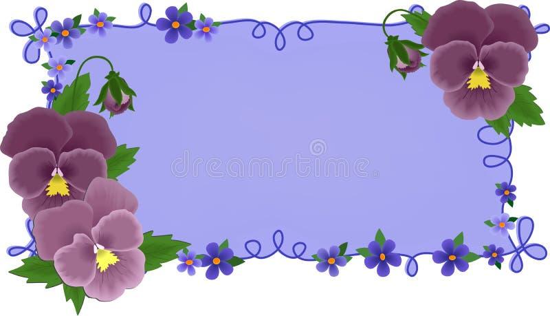 Bandiera o cartolina d'auguri con i pansies illustrazione vettoriale