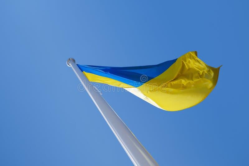 Bandiera ucraina nel vento Contro lo sfondo del cielo immagini stock libere da diritti