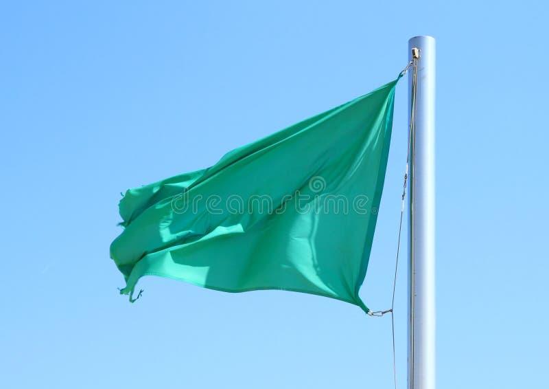 Bandiera verde che soffia nel vento immagini stock libere da diritti