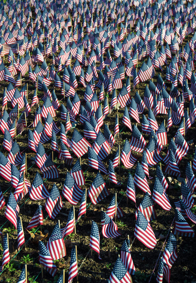 Bandiere americane in onore dei nostri veterani fotografie stock libere da diritti