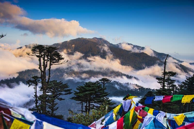 Bandiere di preghiera che appendono sulla La di Thrumshing, il passaggio di 3750m, Bhutan orientale fotografia stock