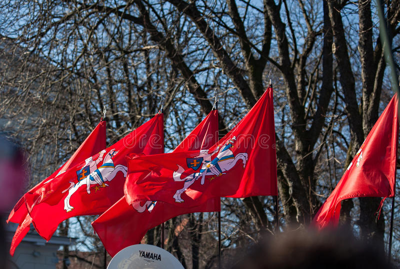 Bandiere (storiche) lituane dello stato immagine stock libera da diritti