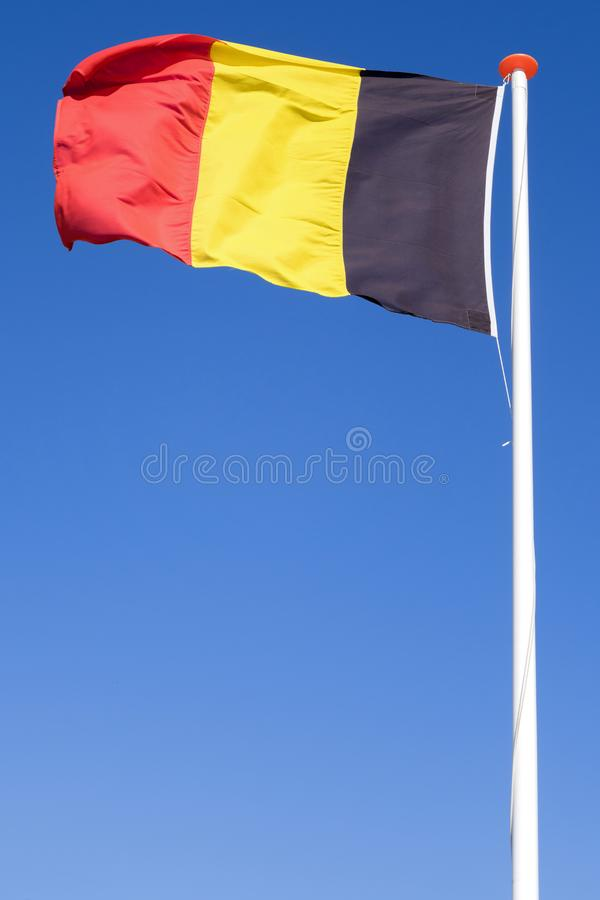 Bandierina belga fotografia stock