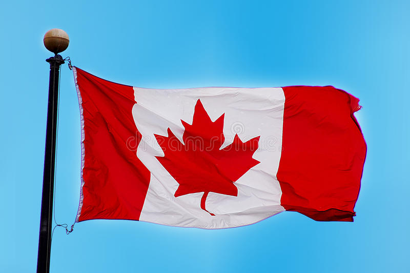 Bandierina canadese immagini stock