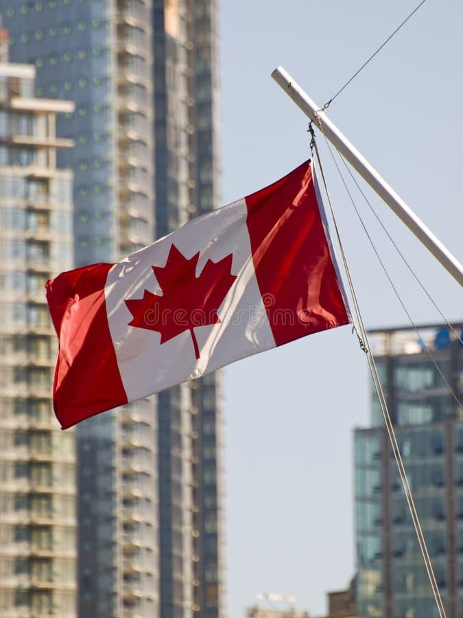Bandierina del Canada immagini stock