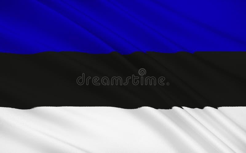 Bandierina dell'Estonia illustrazione di stock