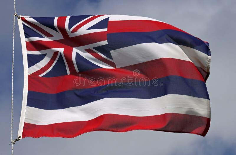 Bandierina dell'Hawai fotografia stock libera da diritti