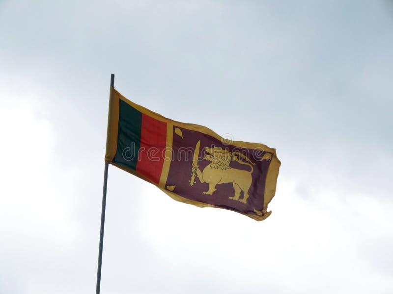 Bandierina dello Sri Lanka fotografie stock