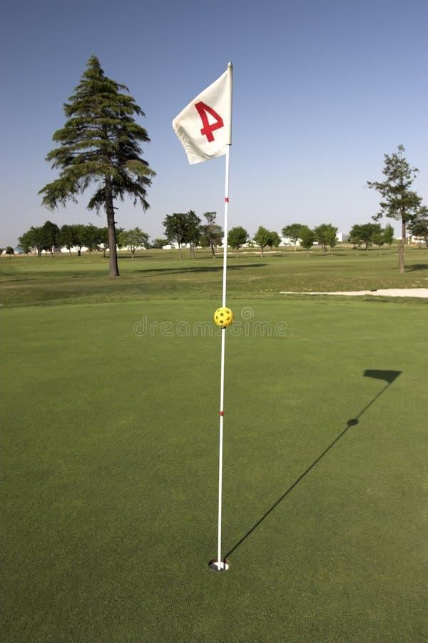Bandierina di golf fotografie stock libere da diritti