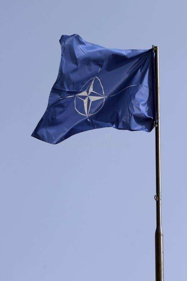 Bandierina di NATO fotografia stock