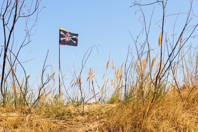 Download Bandierina Di Pirata Allegra Di Roger Fotografia Stock - Immagine di pianta, avvertimento: 56889920