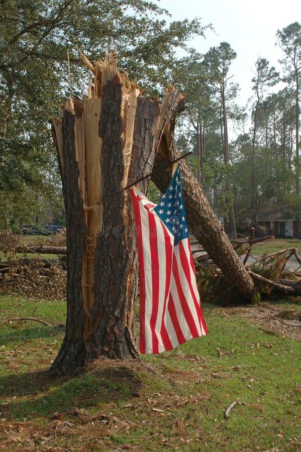 Bandierina dopo Katrina immagini stock