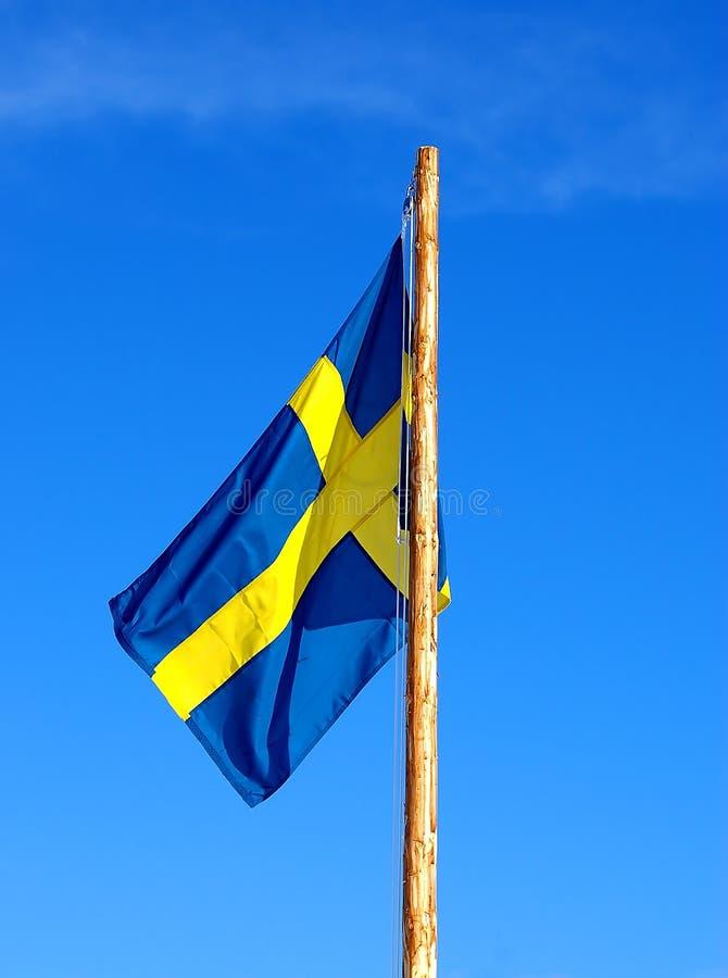 Bandierina svedese fotografie stock