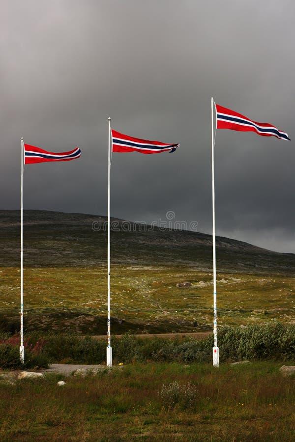 Bandierine norvegesi immagini stock