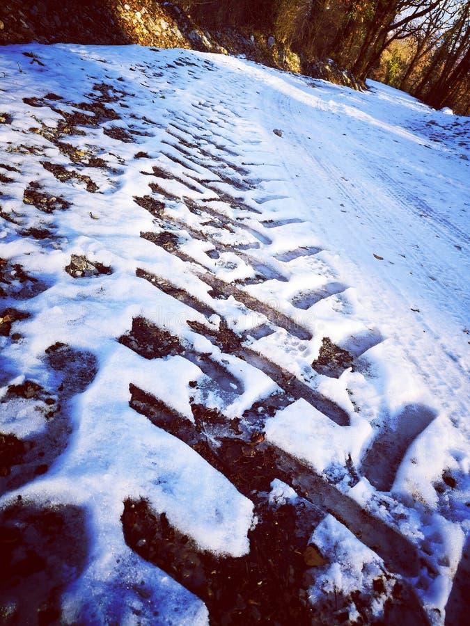 Bandnoteringen in sneeuw stock fotografie