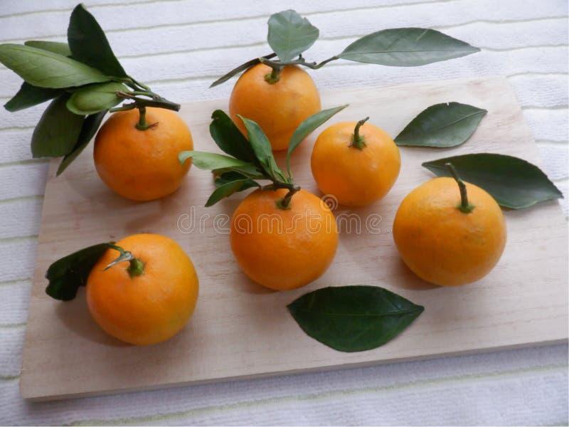 Bando de laranjas imagens de stock royalty free