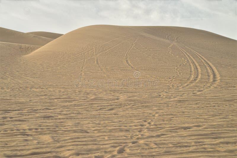 Bandsporen in zandduinen bij Keizerzandduinen, Californië, de V.S. stock fotografie