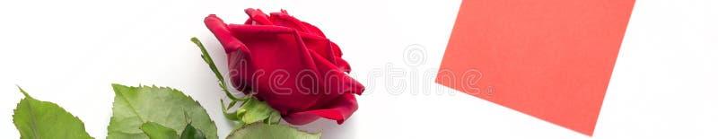 Baner av den härliga ljusa röda rosen med den röda klistermärken för din text vektor f?r valentin f?r pardagillustration ?lska Sy royaltyfria foton