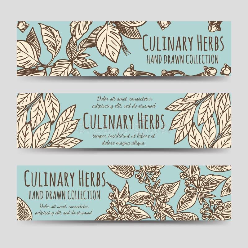 Baner för kulinariska örter för tappning horisontal stock illustrationer