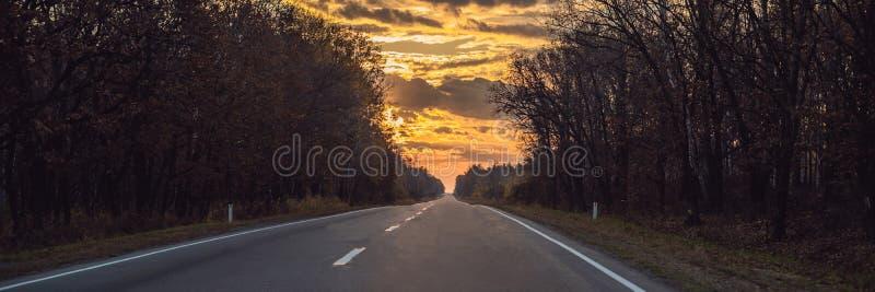 BANER LÅNGT FORMAT som förbluffar sikt med den färgrika höstskogen med asfaltbergvägen Härligt landskap med tomt arkivfoton