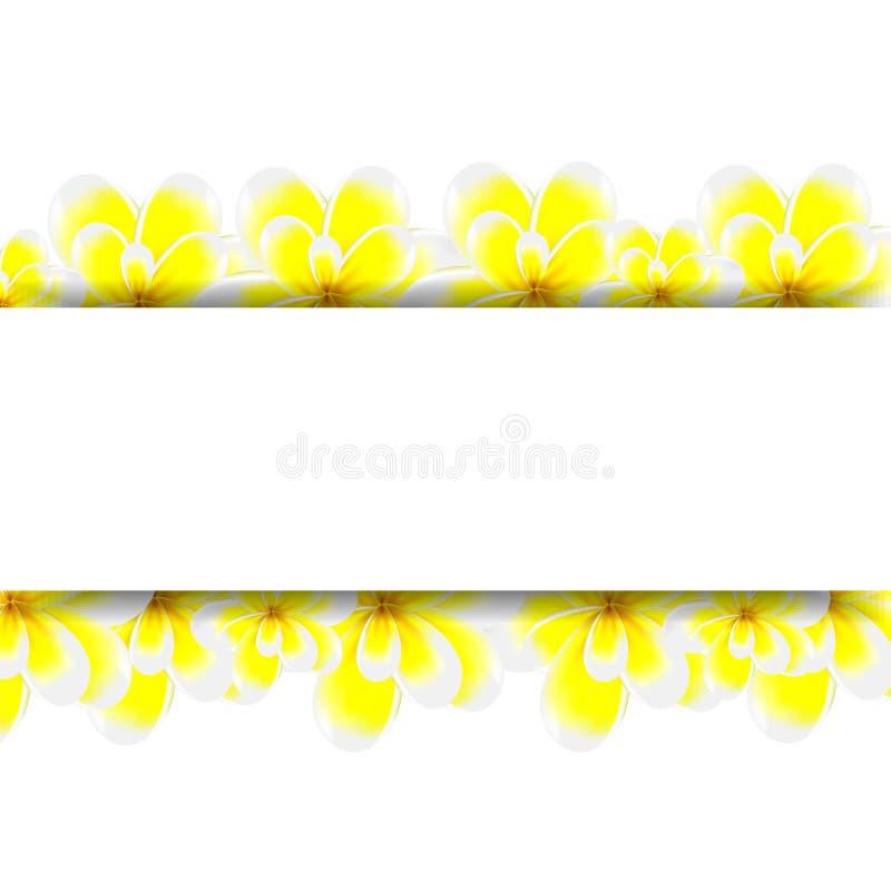 Baner med blommor royaltyfri illustrationer