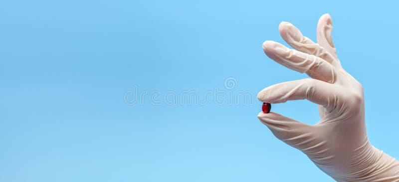 baner Närbild av ett handfragment i en vit medicinsk handske som rymmer ett piller, kapsel på en blå bakgrund arkivfoto