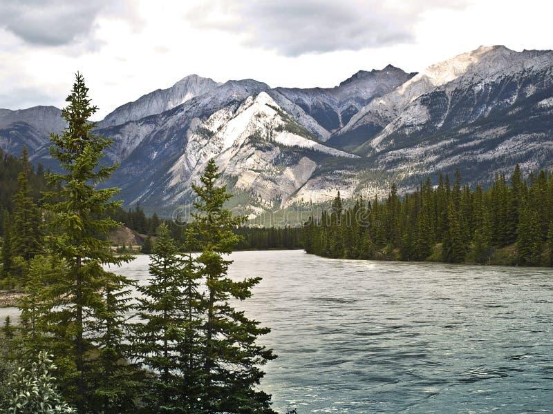 banff加拿大国家公园河萨斯喀彻温省 库存图片