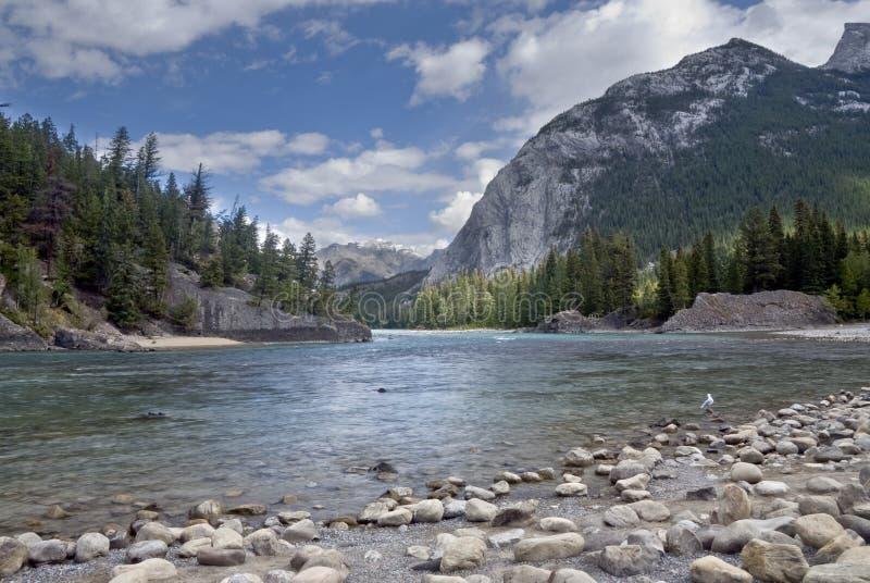 banff加拿大自然公园 免版税图库摄影
