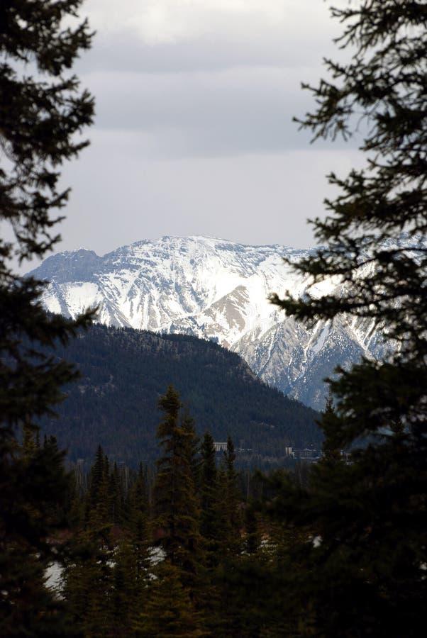 banff山 库存照片