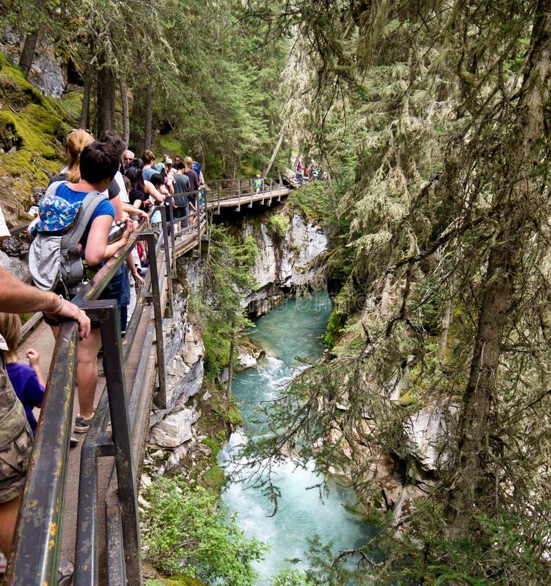 banff峡谷约翰斯顿 免版税图库摄影