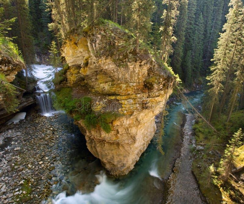 banff峡谷约翰斯顿 免版税库存照片