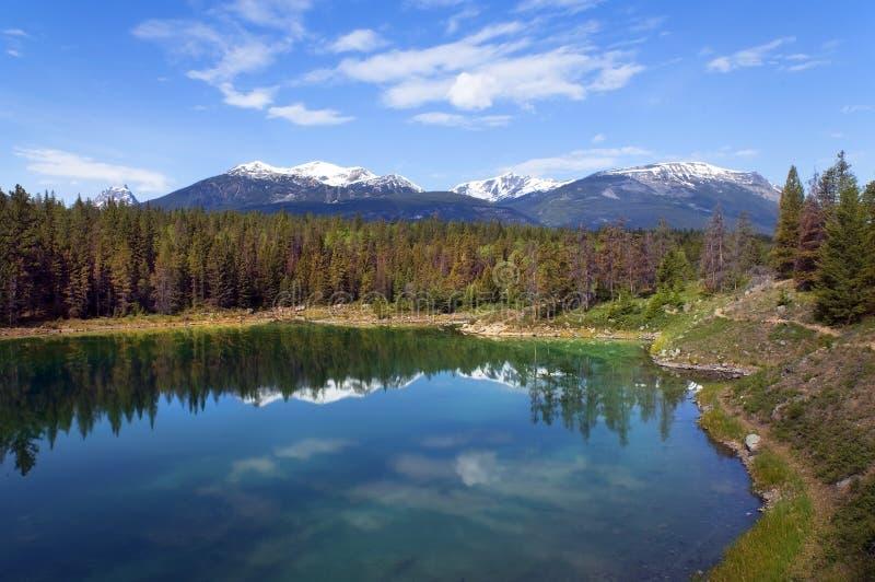 banff Канада landscapes национальный парк стоковое фото