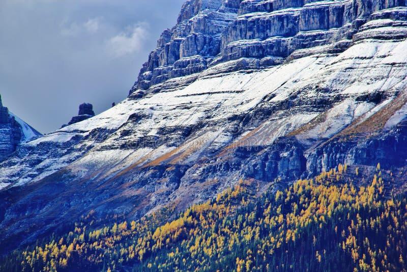 Banff, Alberta, Kanada obrazy stock