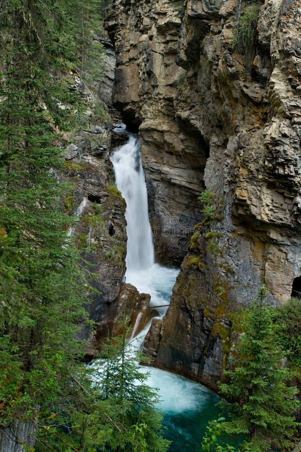banff Kanada kanjonfalls johnston fäller ned royaltyfria foton