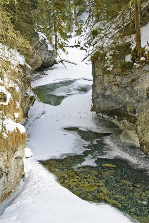 banff kanjon johnston np arkivfoton