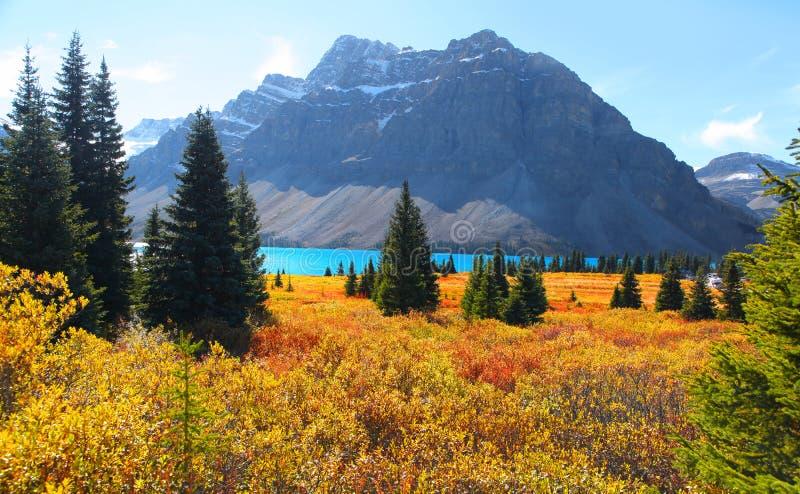 Banff nationalpark royaltyfri foto