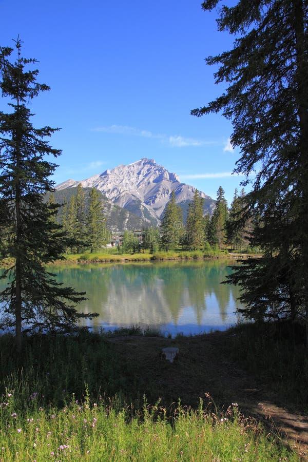 Banff - river bow royalty free stock image