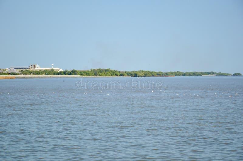 Bang Pu sea in Samutprakan thailand. Close up Bang Pu sea in Samutprakan thailand royalty free stock photo