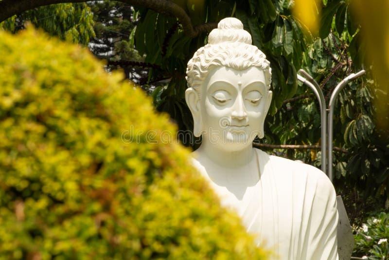 Bangalore, Karnataka czerwiec 04 2019: Zbliżenie twarz Biała Buddha statua w medytować posturę na kamienia stole z naturą jako a zdjęcia stock