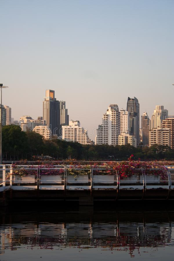 Modern buildings skyline with reflections on pond surface. Bangkok cityscape from Benjakitti park pond during sunset: modern buildings skyline with reflections stock photo