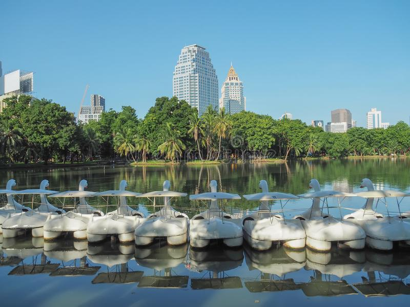 Bangkok cityscape lumpini park lake view with a row of Swan Pedal Boats. Bangkok cityscape lumpini  public park lake view with a row of Swan Pedal Boats stock photography