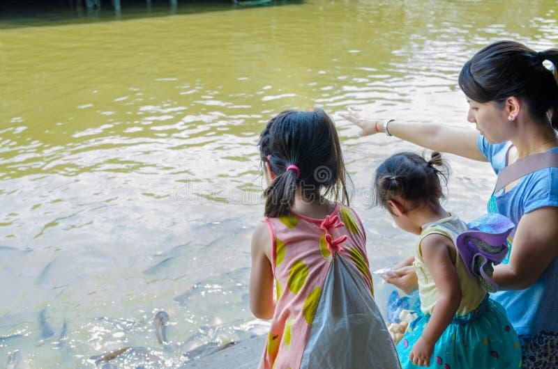 Bangkok, Tailandia: Los turistas japoneses están alimentando pescados imagenes de archivo