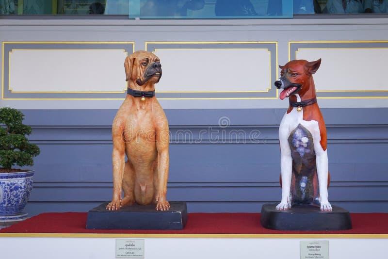 Bangkok Tajlandia, Listopad, - 10, 2017: Cao Cao i Thongdaeng psy w Królewskiej Crematorium wystawie królewiątko Bhumibol Adulyad obrazy stock