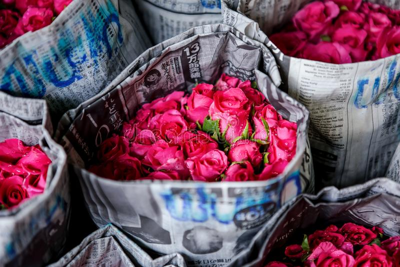 Bangkok, Thailand, Blossom, Bouquet, Bright stock photography
