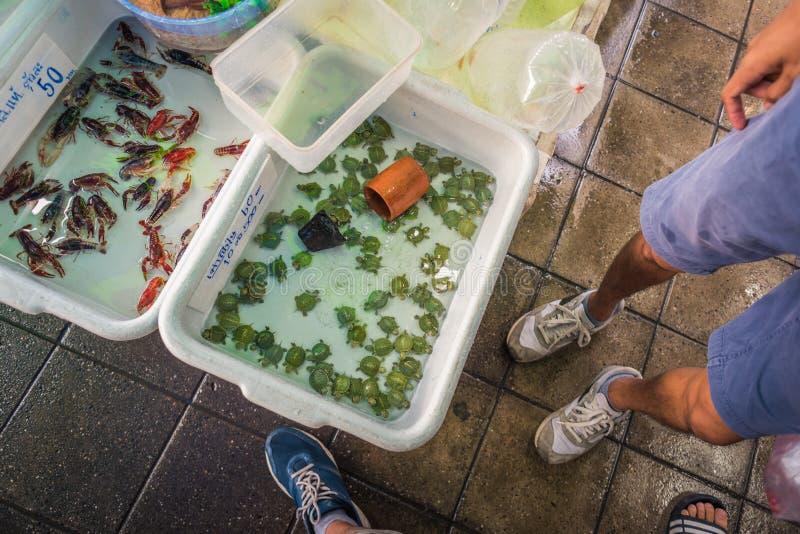 Bangkok, Thailand: containers met water met babyschildpadden en zeekreeften voor verkoop op Chatuchak-Weekendmarkt stock afbeeldingen